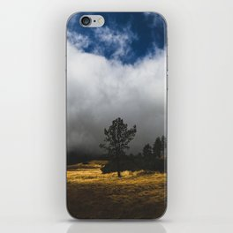 Meadow Glow iPhone Skin