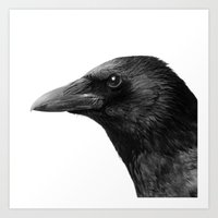 crow Art Prints featuring crow by Dreyria