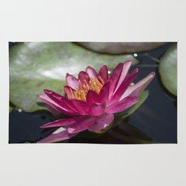 Longwood Gardens - Spring Series 287 Rug
