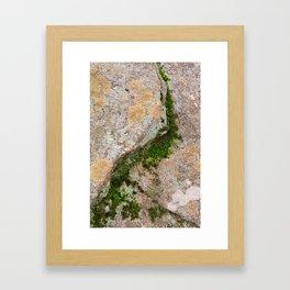 Yin Yang Moss Stone Framed Art Print