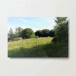 The Great Outdoors in the Summer Metal Print