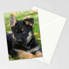 8 weeks old shepherd puppy Stationery Cards