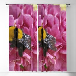 Bumble Bee On Pink Flower Macro Close Up Blackout Curtain