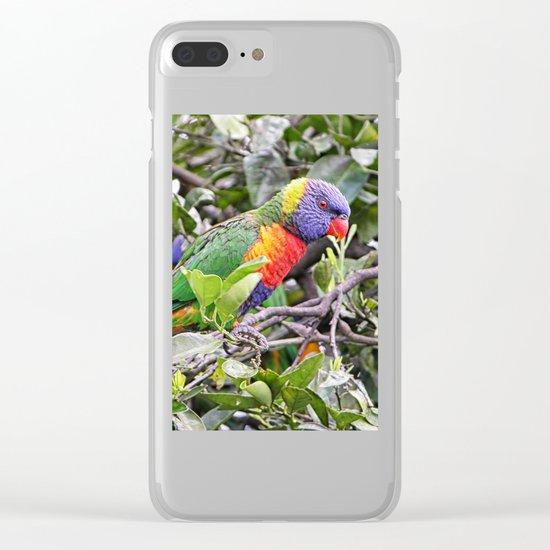 rainbow lorikeet on branch in tree Clear iPhone Case