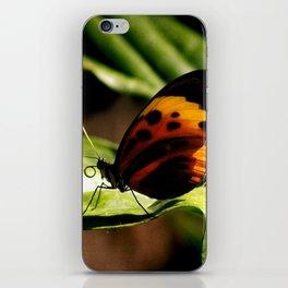 Graceful iPhone Skin