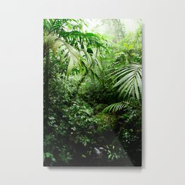 Misty Rainforest Creek Metal Print
