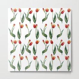 Spring's fragrances. Tulips. Metal Print