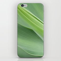Green Agave Attenuata iPhone & iPod Skin