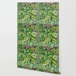 Watercolour Succulents Wallpaper