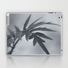 Let me touch you Laptop & iPad Skin