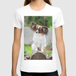 Outdoor portrait of a papillon purebreed dog T-shirt