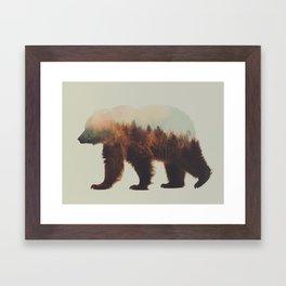Norwegian Woods: The Brown Bear Framed Art Print