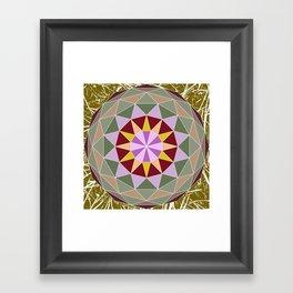 Spiny Star Framed Art Print