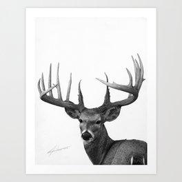The Majestic Trophy Buck - Deer Graphite Pencil Drawing - by Julio Lucas Art Print