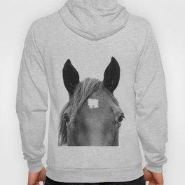 Peeking Horse Hoody