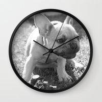 french bulldog Wall Clocks featuring French Bulldog by Kathleen Schulze