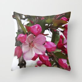 Spring blossoms - Strawberry Parfait Crabapple Throw Pillow
