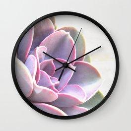 pink succulent plant Wall Clock