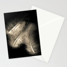 Three feathers in black and white Stationery Cards