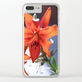 Lilies In The Spotlight Clear iPhone Case