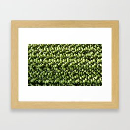 A TRAIL OF GREEN Framed Art Print