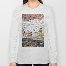 birds bath in the sun Long Sleeve T-shirt