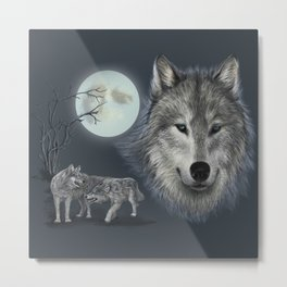 Picture of a wolf in a moonlit night Metal Print