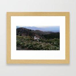 Lost River Valley Rose Framed Art Print