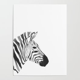 zebraaa Poster