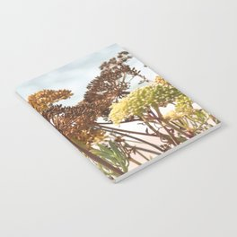 Succulent wild flowers by the sea Notebook