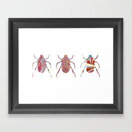 Painted Beetles Framed Art Print