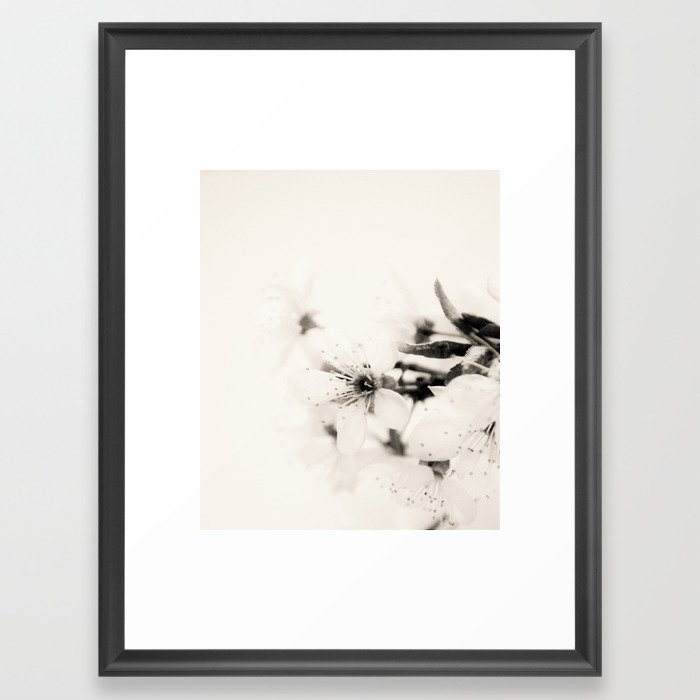 Monochrome Blossoms Close-up Framed Art Print