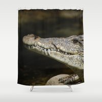 crocodile Shower Curtains featuring Crocodile  by Bunny+Bear Photography