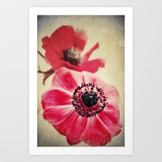 Sweet Anemone II  Art Print