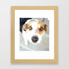 My dog. Framed Art Print