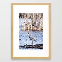 Huron Framed Art Print