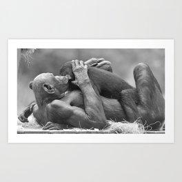 Affectionate Bonobos Art Print