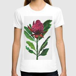 Red Flowers Floral Waratah Protea, botanical T-shirt