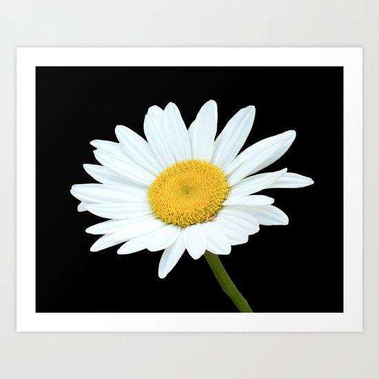 Pure White Art Print