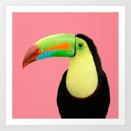 Toucan Bird - Pink Art Print