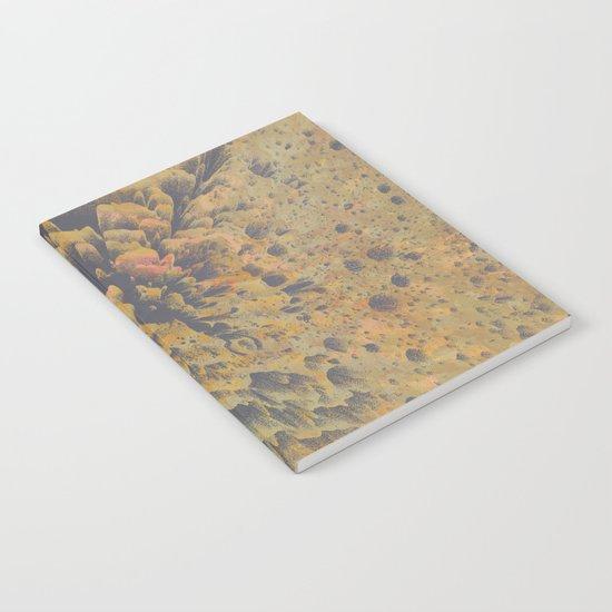 FLEW / PATTERN SERIES 008 Notebook