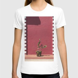 Flower-pot in front of red wall, Panaji, Goa, India T-shirt