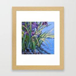 Sun Day—Iris Framed Art Print