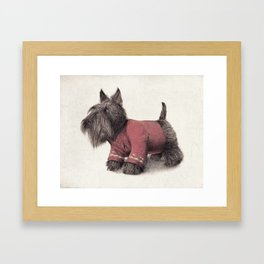Scotty Framed Art Print