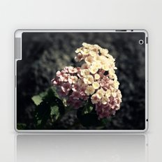 A Simple Gift Laptop & iPad Skin