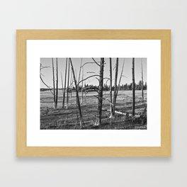 Life on the Caldera Framed Art Print