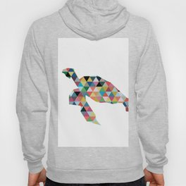 Colorful Geometric Turtle Hoody