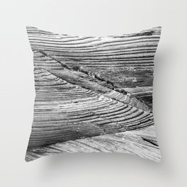 Petrified Dune Throw Pillow