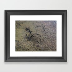 Ephemeral Framed Art Print