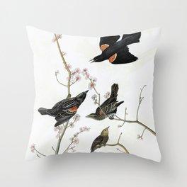 Red-winged Starling Or Marsh Blackbird - John James Audubon Throw Pillow